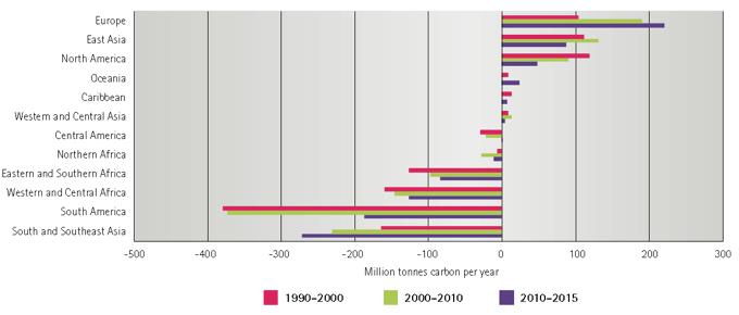 ABBILDUNG 3: VERÄNDERUNG DER GESPEICHERTEN KOHLENSTOFF-MENGE IM WALD WELTWEIT (1990–2015)