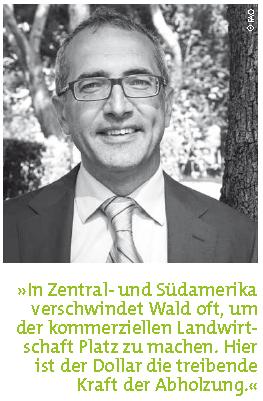 Ewald Rametsteiner, FAO