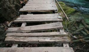 AgrarThinkTank: Kommunikation auf dem Holzweg? – Landwirtschaft neu erzählen