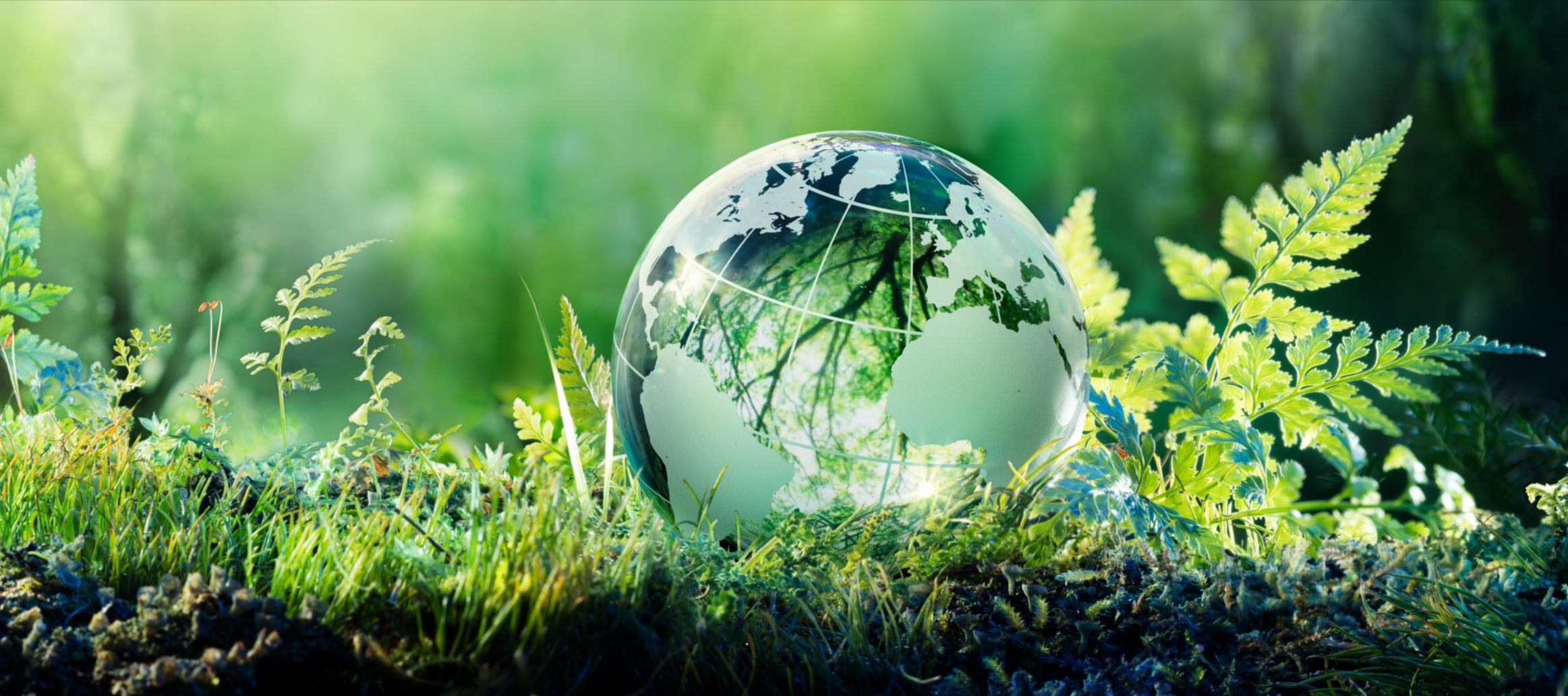 Globus in Wiese