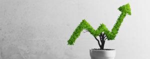 Wirtschaftsboom am Land – Bioökonomie macht's möglich?
