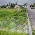 Niederösterreich: Mit Ökostraßen am richtigen Weg