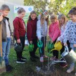Steiermark: Mit Kindern Klimaschutz in der Gemeinde verwurzeln