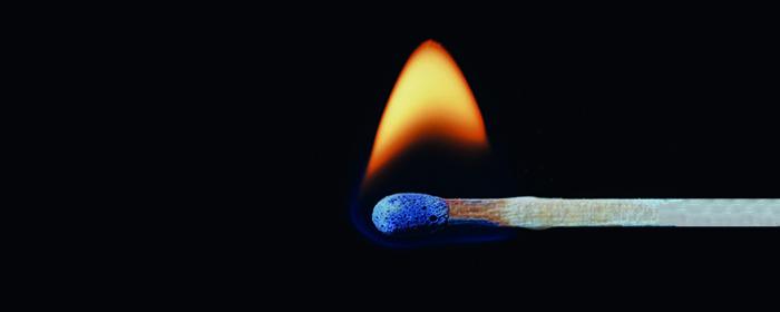 Holzgas & Holzdiesel - das neue Factsheet