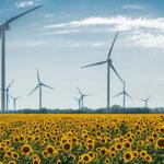 Erneuerbaren-Ausbau-Gesetz: ökosozialer Schritt in die Energiezukunft