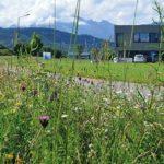 Lebensraum Businesspark - Grüne Infrastruktur im Gewerbegebiet