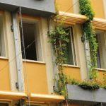 Vom Bürogebäude zur Klimaoase