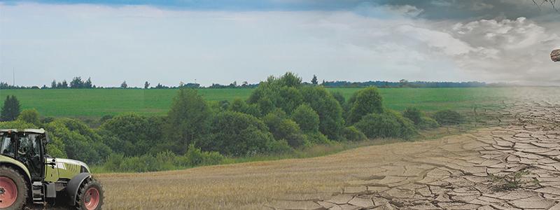 Workshop – Junge Landwirtschaft im (Klima-)Wandel