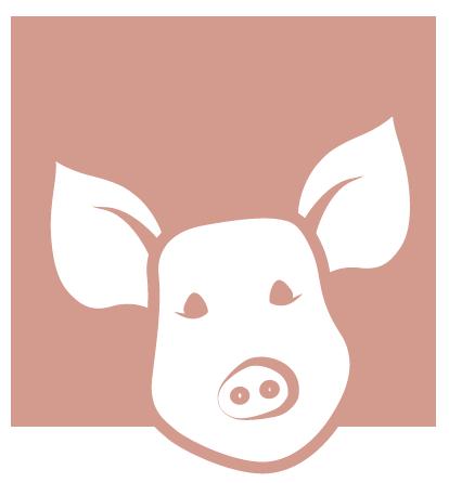 Icon Schwein