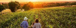 Webinar: Betriebsnachfolge in der Land- und Forstwirtschaft